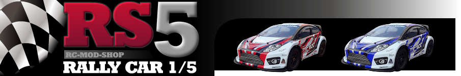 Amewi RS5 Rally Car Banner