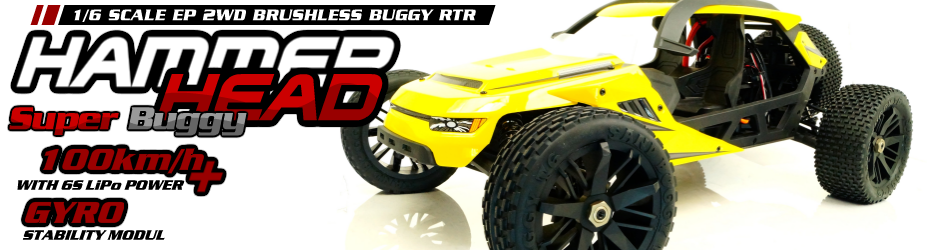 Hammerhead - 2WD brushless Buggy 1/6 Scale
